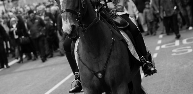 Mounted Officer - City of London Police. Photo by William Warby (http://www.flickr.com/photos/wwarby/)