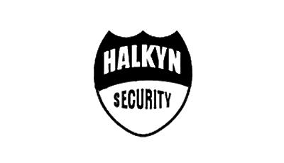 Halkyn Security Consultants